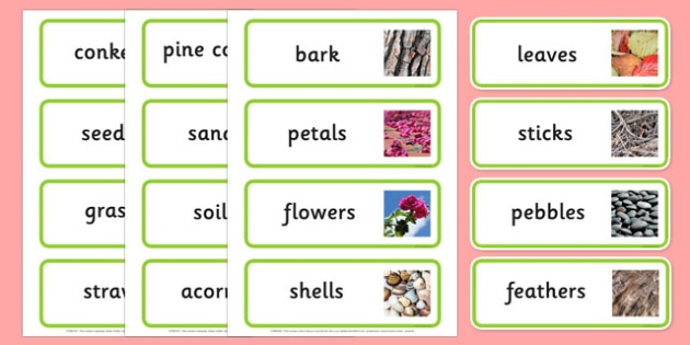 Natural Materials Photo Word Cards - EYFS, KS1, outdoor learning, Forest Schools, outdoors, outside, pictures, photos