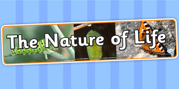 The Nature of Life Photo Display Banner - the nature of life, IPC display banner, IPC, the nature of life display banner, IPC display, nature