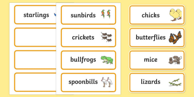 Story Word Cards to Support Teaching on Handa's Hen - word, literacy, visual, aids