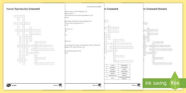 KS3 Human Reproduction Crossword