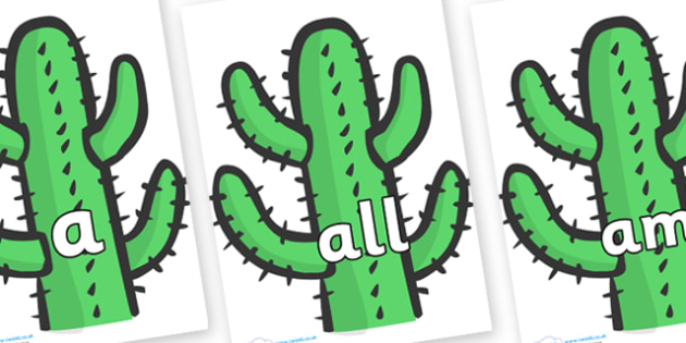 Foundation Stage 2 Keywords on Cactus - FS2, CLL, keywords, Communication language and literacy,  Display, Key words, high frequency words, foundation stage literacy, DfES Letters and Sounds, Letters and Sounds, spelling