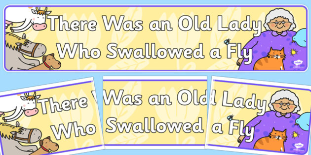 There Was an Old Lady Who Swallowed a Fly Display Banner - fly