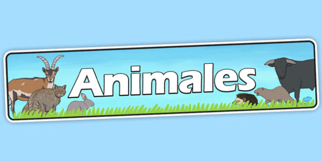 Spanish Animals Banner - spanish, animals, display banner, banner