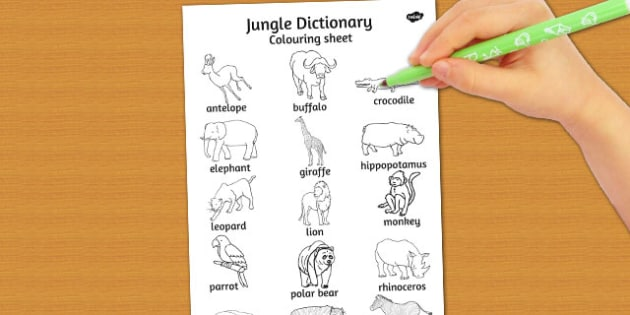 Jungle Dictionary Colouring sheet - colours, jungles, sheets