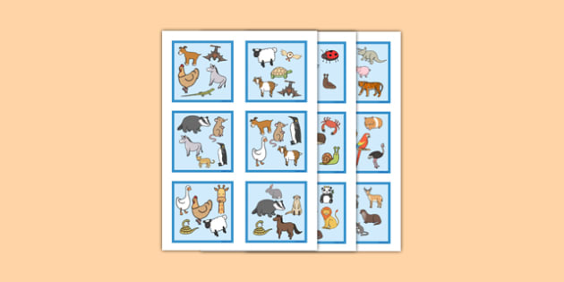 Advanced Snap Card Game Animals - advanced, snap card, game, animals, snap, card