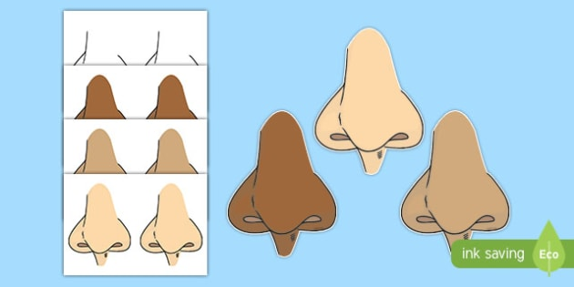 Nose Display Cut Outs