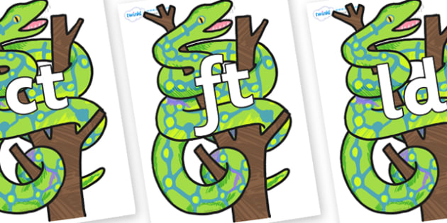 Final Letter Blends on Boa Constrictor to Support Teaching on The Bad Tempered Ladybird - Final Letters, final letter, letter blend, letter blends, consonant, consonants, digraph, trigraph, literacy, alphabet, letters, foundation stage literacy