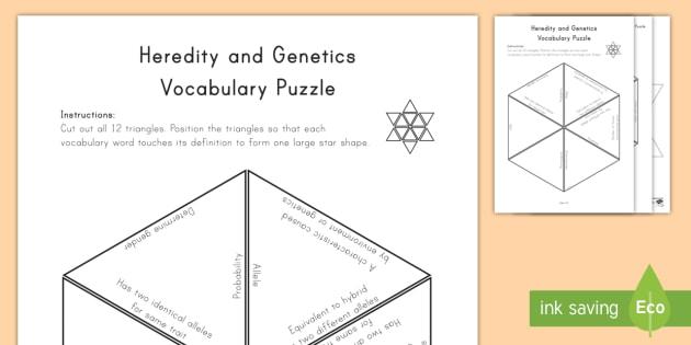 Heredity and Genetics Vocabulary Puzzle Vocabulary Puzzle - Science Vocabulary Puzzles, genetics, allele, heredity, DNA, X&Y, chromosome.