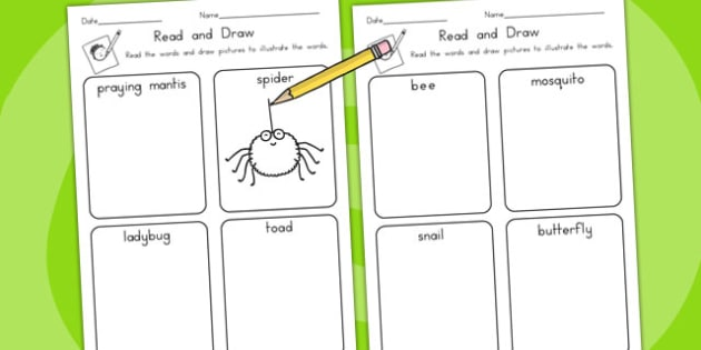 Minibeasts Read and Draw Worksheet - activities, games, minibeast