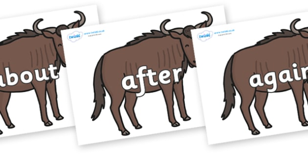 KS1 Keywords on Wildebeests - KS1, CLL, Communication language and literacy, Display, Key words, high frequency words, foundation stage literacy, DfES Letters and Sounds, Letters and Sounds, spelling