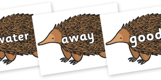 Next 200 Common Words on Echidna - Next 200 Common Words on  - DfES Letters and Sounds, Letters and Sounds, Letters and sounds words, Common words, 200 common words