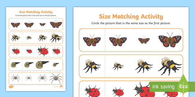 Minibeast Size Matching Worksheet - minibeasts, size match, size
