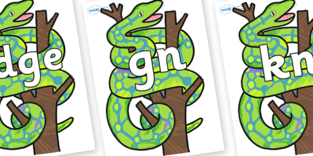 Silent Letters on Boa Constrictor to Support Teaching on The Bad Tempered Ladybird - Silent Letters, silent letter, letter blend, consonant, consonants, digraph, trigraph, A-Z letters, literacy, alphabet, letters, alternative sounds