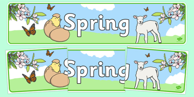 Spring Display Banner - Spring, Display banner, poster, display, lambs, daffodils, new life, flowers, buds, plants, growth
