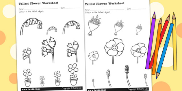 Flower Themed Tallest Object Worksheet - Australia, Flower