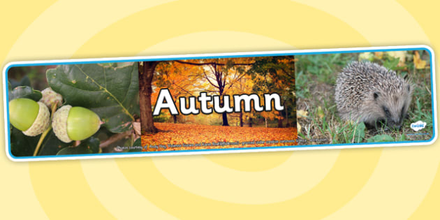 Four Seasons Photo Display Banners Autumn - four seasons, autumn, display banner, autumn display banner, autumn banner, photo display banner
