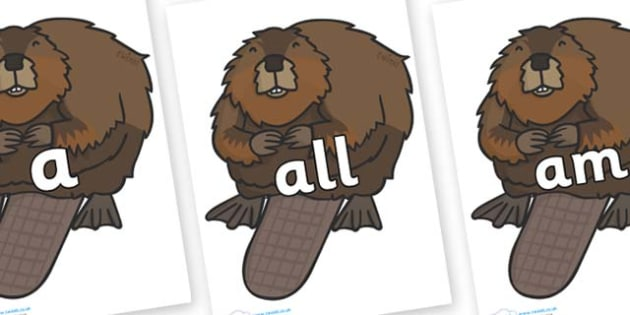 Foundation Stage 2 Keywords on Beavers - FS2, CLL, keywords, Communication language and literacy,  Display, Key words, high frequency words, foundation stage literacy, DfES Letters and Sounds, Letters and Sounds, spelling