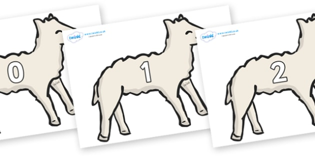 Numbers 0-50 on Lambs - 0-50, foundation stage numeracy, Number recognition, Number flashcards, counting, number frieze, Display numbers, number posters