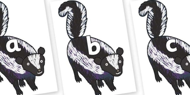 Phase 2 Phonemes on Skunk to Support Teaching on The Bad Tempered Ladybird - Phonemes, phoneme, Phase 2, Phase two, Foundation, Literacy, Letters and Sounds, DfES, display
