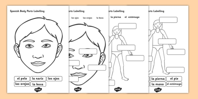 Spanish Body Parts Labelling Worksheet - spanish, body parts