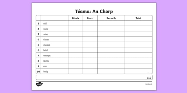 Spelling List An Chorp Activity Sheet, worksheet