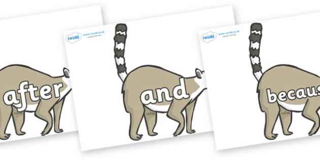 Connectives on Lemurs - Connectives, VCOP, connective resources, connectives display words, connective displays