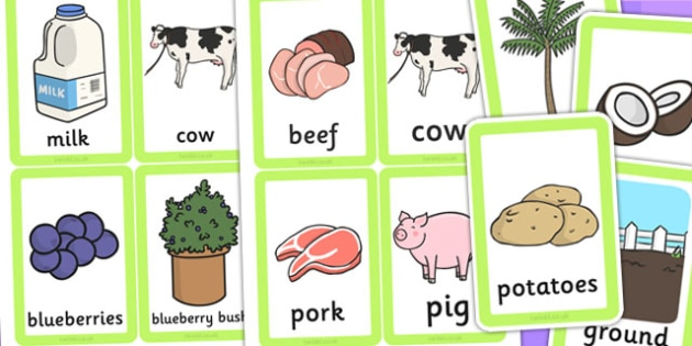 Food Origins Matching Cards - food origins, where does food come from, food, matching, matching cards, cards, flashcards, tree, ground, cow