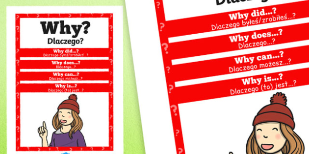 Why Question Poster Polish Translation - posters, displays, display, questions