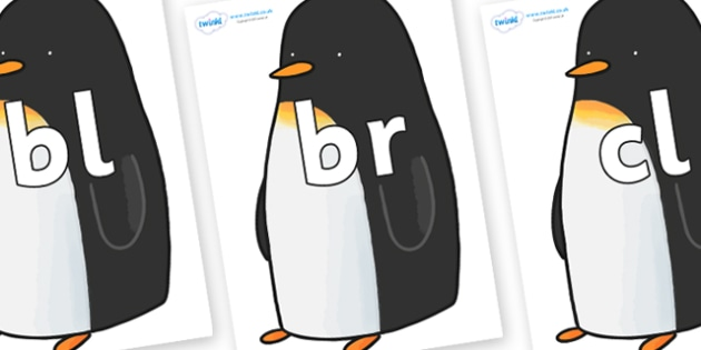 Initial Letter Blends on Penguin to Support Teaching on Lost and Found - Initial Letters, initial letter, letter blend, letter blends, consonant, consonants, digraph, trigraph, literacy, alphabet, letters, foundation stage literacy