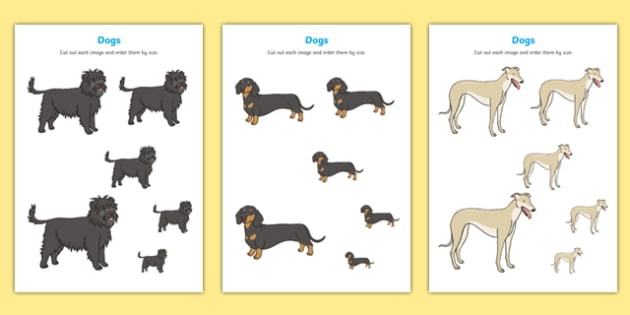 Dog-Themed Size Ordering - Dame Lynley Dodd, hairy maclary, dog, size ordering