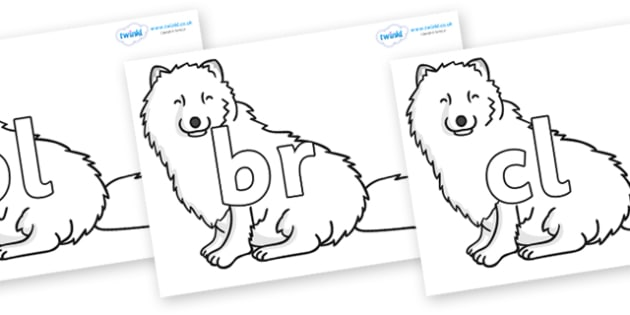 Initial Letter Blends on Arctic Foxes - Initial Letters, initial letter, letter blend, letter blends, consonant, consonants, digraph, trigraph, literacy, alphabet, letters, foundation stage literacy