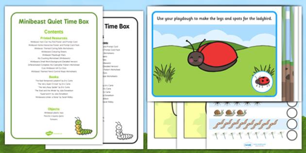 Minibeast Quiet Time Box - Bugs, Creepy Crawlies, EYFS