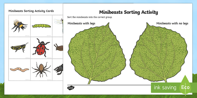 Minibeasts Legs or No Legs Sorting Activity - sorting, activity, sorting activity, minibeasts, minibeast legs, minibeast sorting activity, sorting game