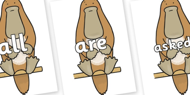 Tricky Words on Platypus to Support Teaching on The Great Pet Sale - Tricky words, DfES Letters and Sounds, Letters and sounds, display, words
