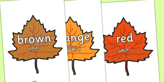 Colour Words on Autumn Leaves Arabic Translation - arabic, autumn