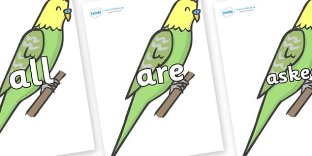 Tricky Words on Budgies - Tricky words, DfES Letters and Sounds, Letters and sounds, display, words