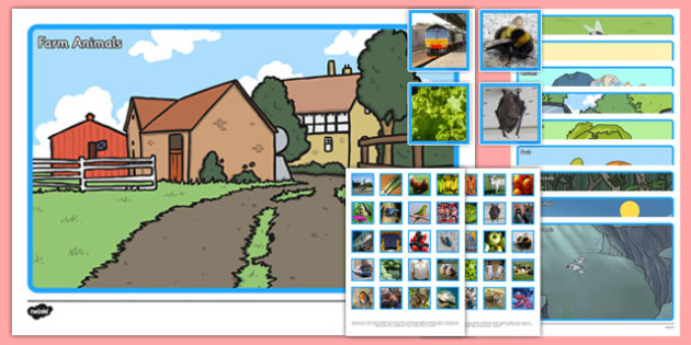 Photo Category Sorting Activity - photo, category, sorting, sort, activity