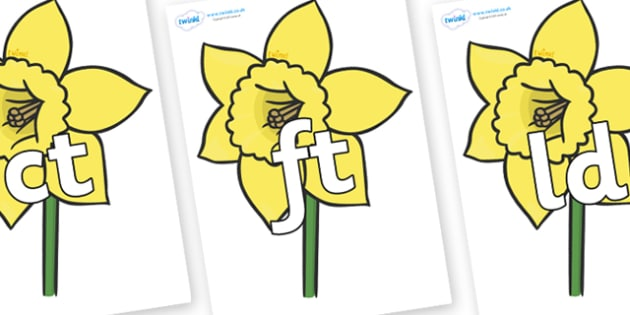 Final Letter Blends on Daffodils - Final Letters, final letter, letter blend, letter blends, consonant, consonants, digraph, trigraph, literacy, alphabet, letters, foundation stage literacy