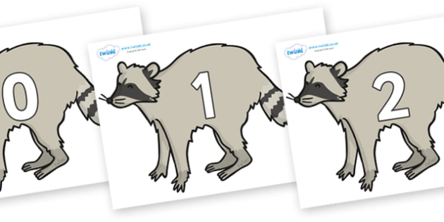 Numbers 0-100 on Racoons - 0-100, foundation stage numeracy, Number recognition, Number flashcards, counting, number frieze, Display numbers, number posters