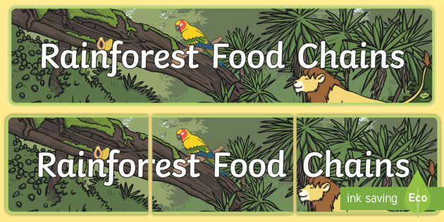 Rainforest Food Chains Display Banner - Food Chains Display