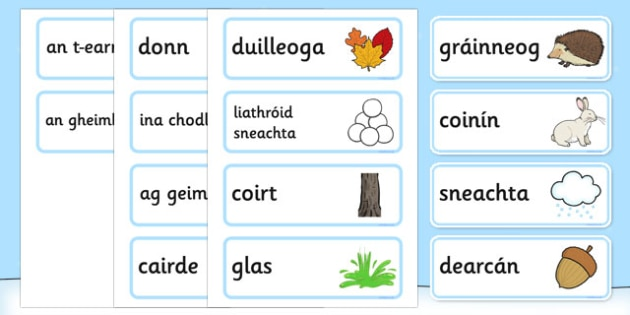 A Little Bit of Winter Vocabulary Gaeilge - roi, irish, gaeilge, a little bit, winter, vocabulary, Geimhreadh