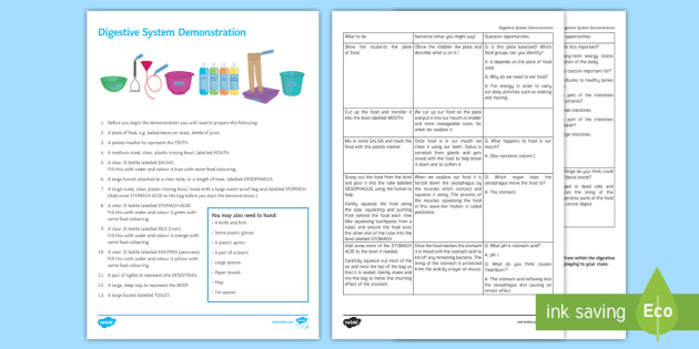 Digestive System Model Investigation Instruction Sheet Print-Out - Investigation Help Sheet, science practical, method, instructions, demonstration, demo, digestive sy