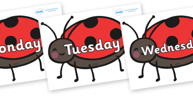 Days of the Week on Ladybirds - Days of the Week, Weeks poster, week, display, poster, frieze, Days, Day, Monday, Tuesday, Wednesday, Thursday, Friday, Saturday, Sunday