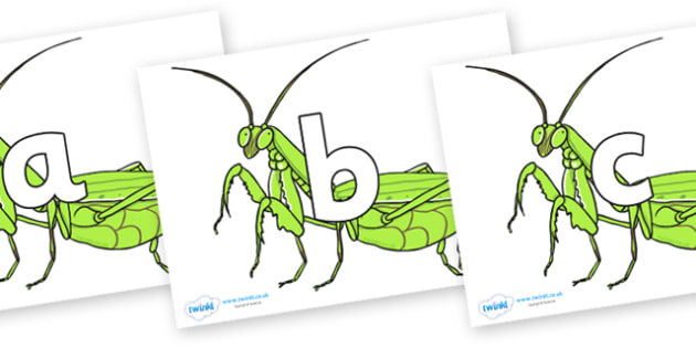 Phoneme Set on Praying Mantis - Phoneme set, phonemes, phoneme, Letters and Sounds, DfES, display, Phase 1, Phase 2, Phase 3, Phase 5, Foundation, Literacy