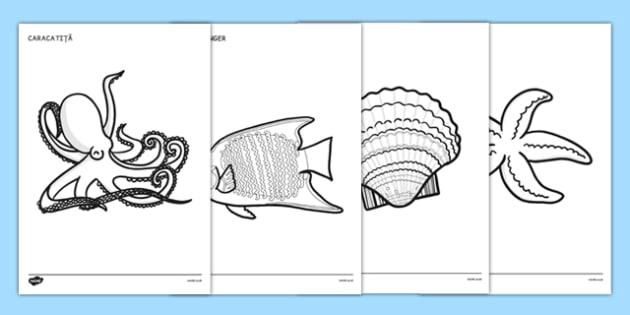 Animale marine, Fise pentru colorat - arte, vara, comunicare
