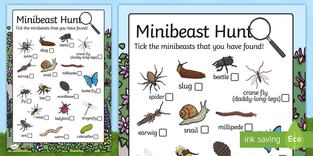 Minibeast Hunt Sheet - Minibeast hunt, minibeast investigation, finding minibeasts, Minibeasts, Topic, Foundation stage, knowledge and understanding of the world, investigation, living things, snail, bee, ladybird, butterfly, spider