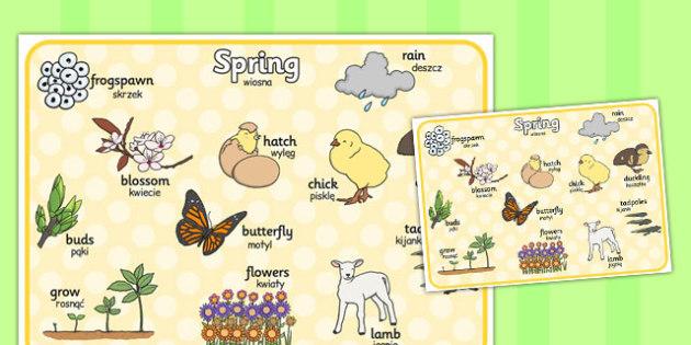 Spring Word Mat Polish Translation - seasons, season, literacy