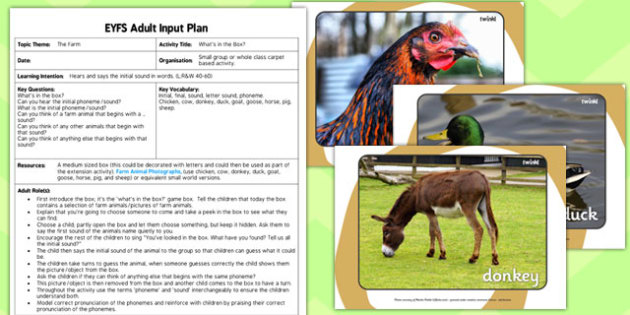 Farm Themed What's in the Box EYFS Adult Input Plan and Resource Pack - plan, goals