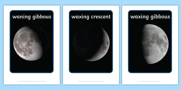 Phases of the Moon Display Photos - display, photos, photo, phases of the moon, the moon, space, moon, moon display photos, set of photos, photos for display, classroom display