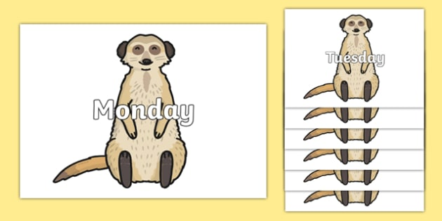 Days of the Week on Meerkats - Days of the Week, Weeks poster, week, display, poster, frieze, Days, Day, Monday, Tuesday, Wednesday, Thursday, Friday, Saturday, Sunday